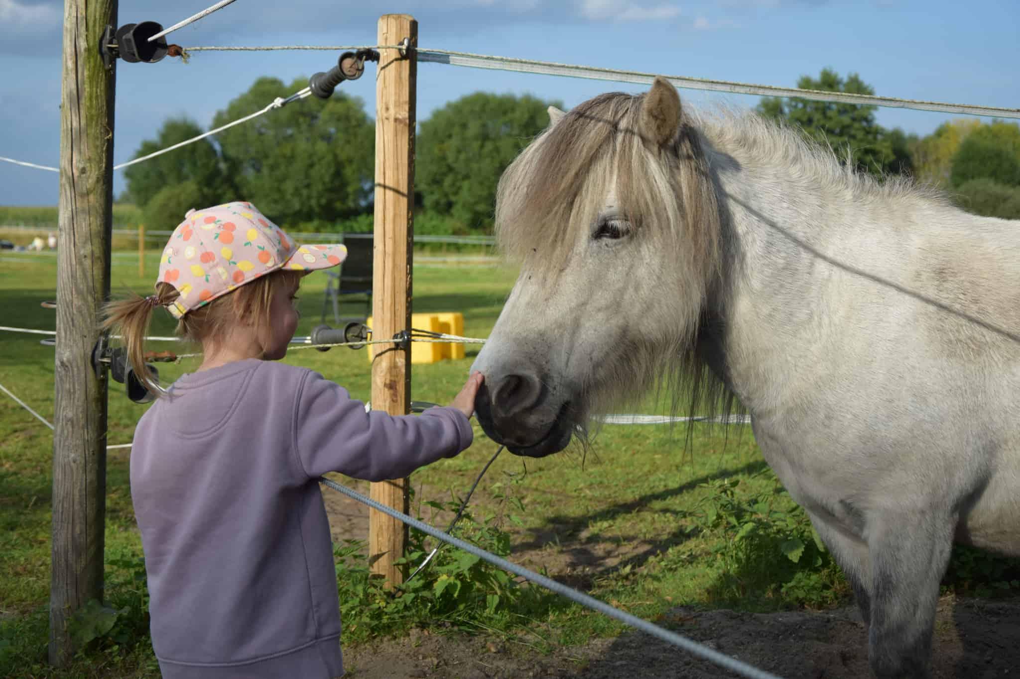 Kleines Mädchen streichelt Pony