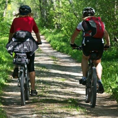Tolle Radtouren in der Umgebung